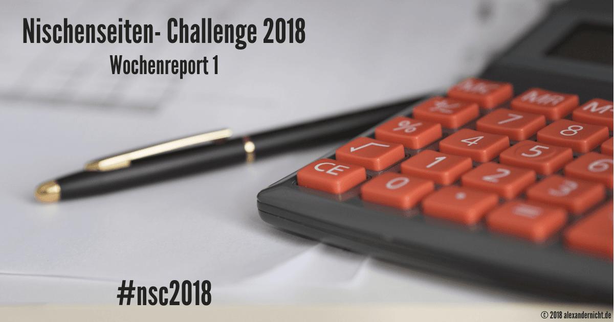 Nischenseiten- Challenge Wochenreport 1